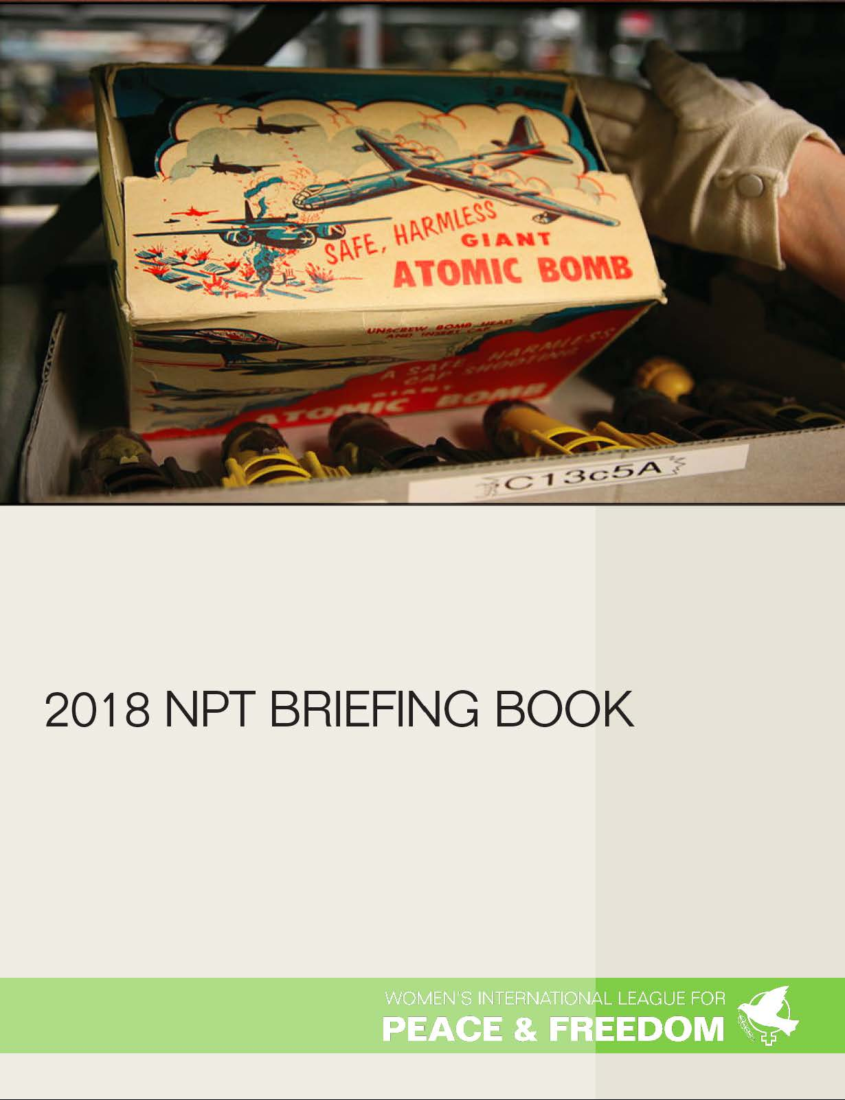 2018-npt-briefing-book-cover